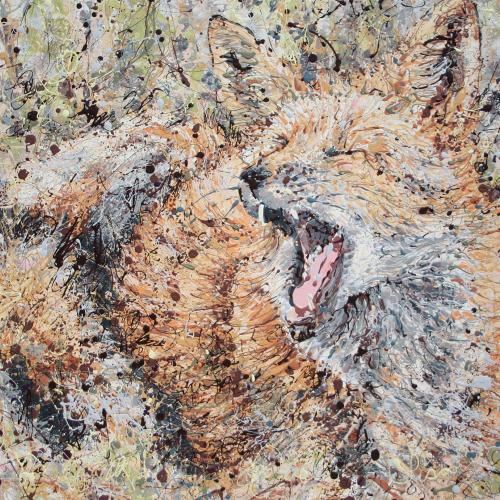 Neighborhood Fox Latex Enamel Painting on Gallery Wrapped Canvas by Fort Collins, Colorado Artist  Lisa Cameron Russell