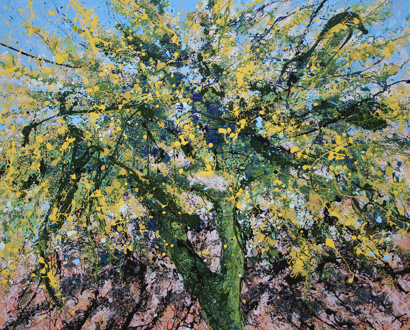 Palo Verde in Arizona Latex Enamel Painting on Gallery Wrapped Canvas by Fort Collins, Colorado Artist Lisa Cameron Russell