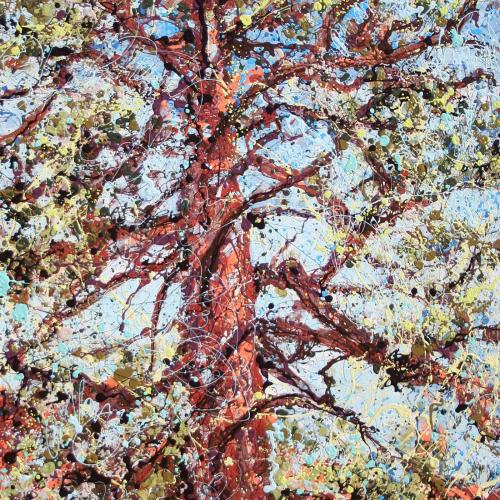 Ponderosa Latex Enamel Painting on Gallery Wrapped Canvas by Fort Collins, Colorado Artist Lisa Cameron Russell