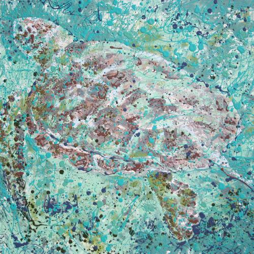 Turtles in Bonaire Latex Enamel Painting on Gallery Wrapped Canvas by Fort Collins, Colorado Artist Lisa Cameron Russell